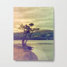 Autumn Lakeside Metal Print