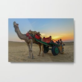Sunset and Camels in Thar Desert, Sam, Jaisalmer, Rajasthan, India Metal Print