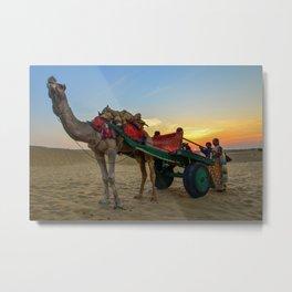Sunset and Camels in Thar Desert, Sam, Jaisalmer, Rajasthan, India Metal Print