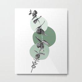 Eucalyptus Sprig Metal Print