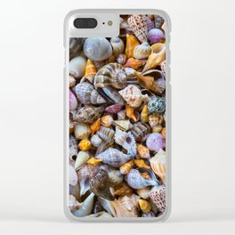 Seashell Collection Clear iPhone Case