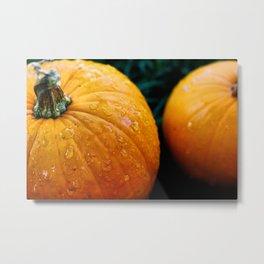 Pumpkins and Tears Metal Print