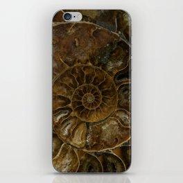Earth treasures - brown amonite iPhone Skin