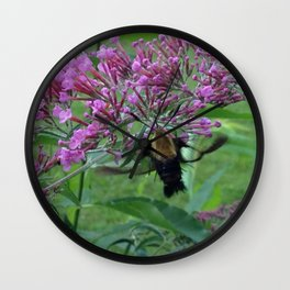 Hummingbird Moth Wall Clock