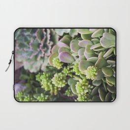 Blushing Succulents Laptop Sleeve