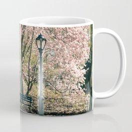 Magnolia's Bloom in Central Park Coffee Mug