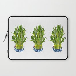 Lucky Bamboo in Porcelain Bowl Laptop Sleeve