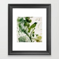 Birds (square 1) Framed Art Print