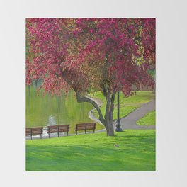 The park  Throw Blanket