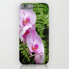orchids Slim Case iPhone 6s