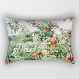 Red Apples In Orchard Tree Rectangular Pillow
