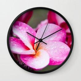 Pua Melia Floral Celebration Wall Clock