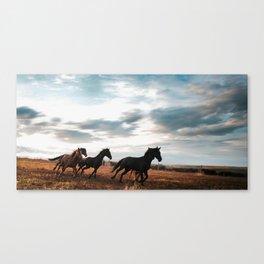 horseplay  Canvas Print