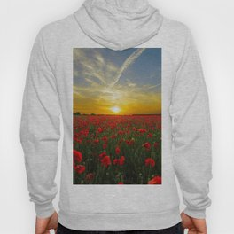 Beautiful Sunset Hoody