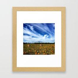 Pumpkin season is here Framed Art Print