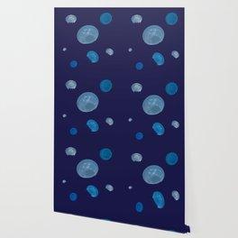 Aurelia aurita Wallpaper