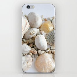 Seashell iPhone Skin