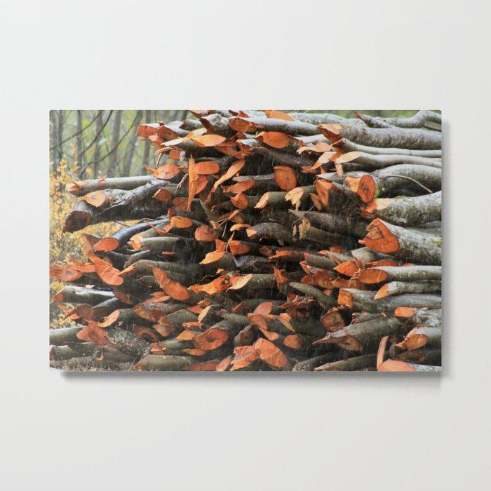 Fresh Wood Metal Print