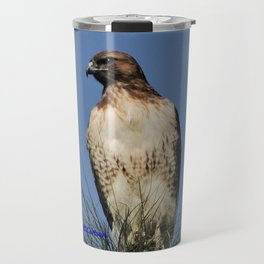 Red-Tailed Hawk on Watch at Foothill and B Street Travel Mug