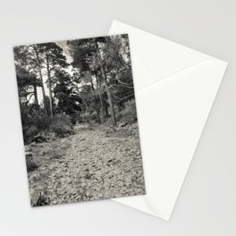 Roman road #2 Stationery Cards
