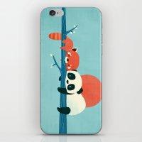 pandas iPhone & iPod Skins featuring Pandas by Jay Fleck