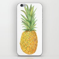 pinapple iPhone & iPod Skins featuring Sketched pineapples by Clare Stoffels