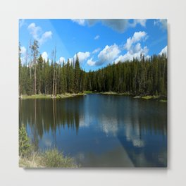 Tranquil Morning At Gull Point Drive Metal Print