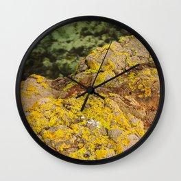 AYM - Australian Yellow Moss Wall Clock