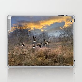 Sunset Geese Landscape Laptop & iPad Skin