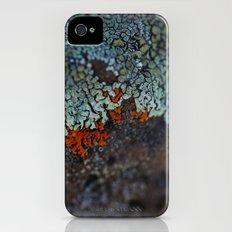Lichen Ice iPhone (4, 4s) Slim Case