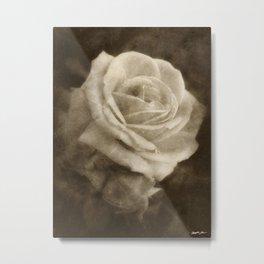 Pink Roses in Anzures 2 Antiqued Metal Print