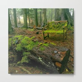Enchanting forest Metal Print