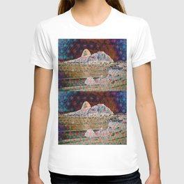 Hill cableway Rio de Janeiro T-shirt