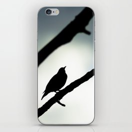 Silhouetted Singer iPhone Skin