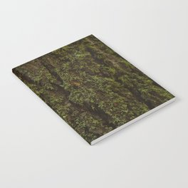 Redwood Forest XV Notebook