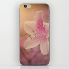Southern Flower iPhone & iPod Skin