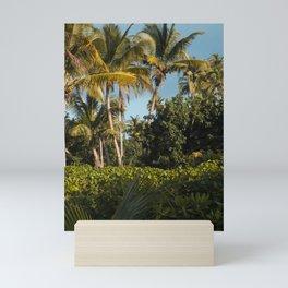 Puerto Rican Palms Mini Art Print