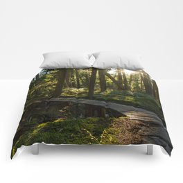 North Shore Trails in the Woods Comforters