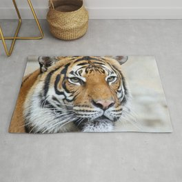 Tiger_20151201_by_JAMFoto Rug