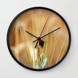 Ladybug macro Wall Clock