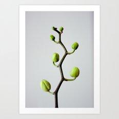 :: tree of growth :: Art Print