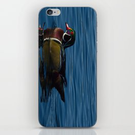Colorful Wood Duck iPhone Skin