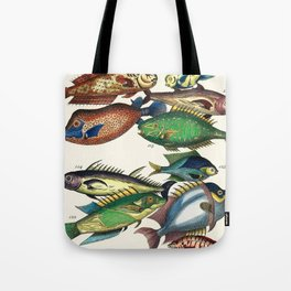 Illustrated Pacific Ocean Exotic Game Fish Identification Chart Tote Bag
