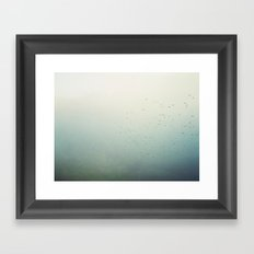 birds 2234 Framed Art Print