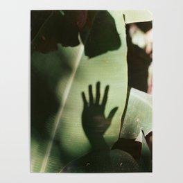 Musa Hand Poster