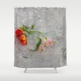 pretty frozen Shower Curtain