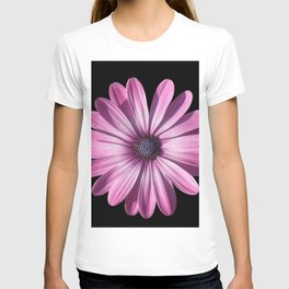 Spectacular African Daisy Isolated On Black T-shirt