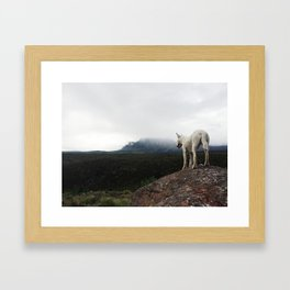 Bella On The Mountain Framed Art Print
