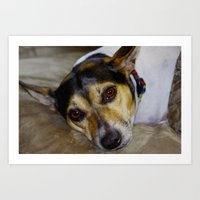 terrier Art Prints featuring Terrier by Rick Kirby