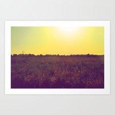 The Field  Art Print